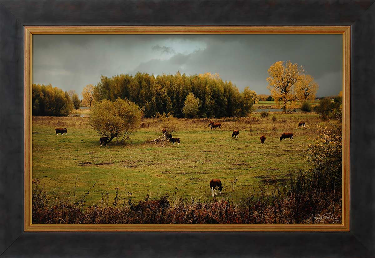 "Dutch landscape: Fine-art print 60x36cm. including frame 73x49cm. Including ""Image-clear glass"". Edition 1 out of 10. With numbered certificate. € 450,-"