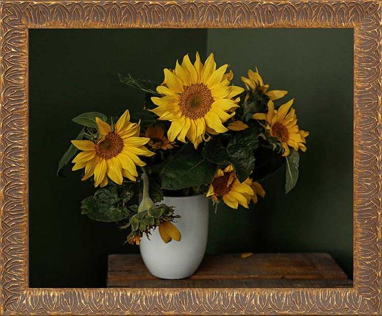 sunflowers-pluijm-fineart
